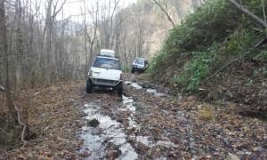 2011-11-13_112632.jpg