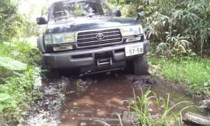 2012-07-01_095822.jpg