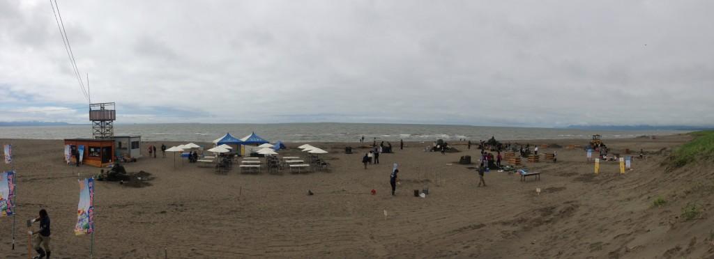 サンドパク2014、全景
